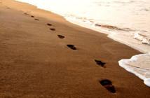 Five Steps Smaller Footprint