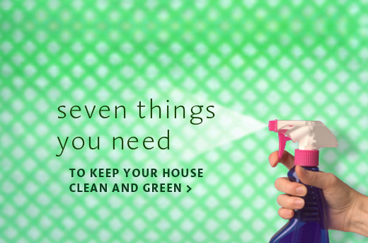 The seven things you need to keep house clean green for Things you need for a home