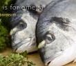 2012-5-13-omega