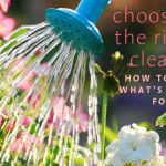Choosing The Right Cleanse – Consciously