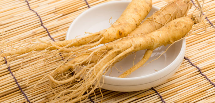 natural beauty ingredients fresh ginseng