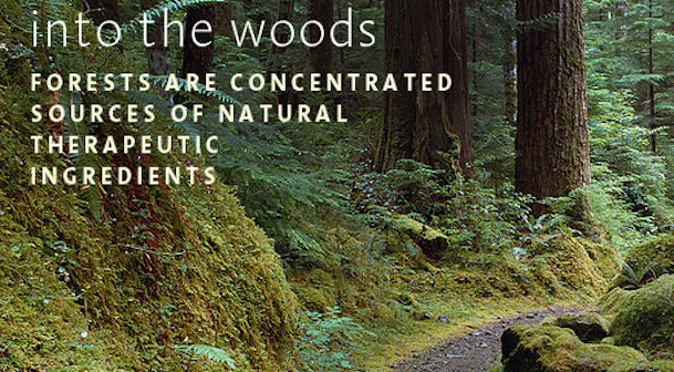 woodland spas