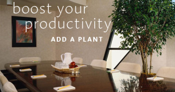 Plant Productivity