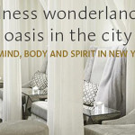 Wellness Wonderland: An Oasis in the City