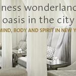 Wellness Wonderland: An Oasis in the City