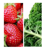 kalestrawberrytipimage