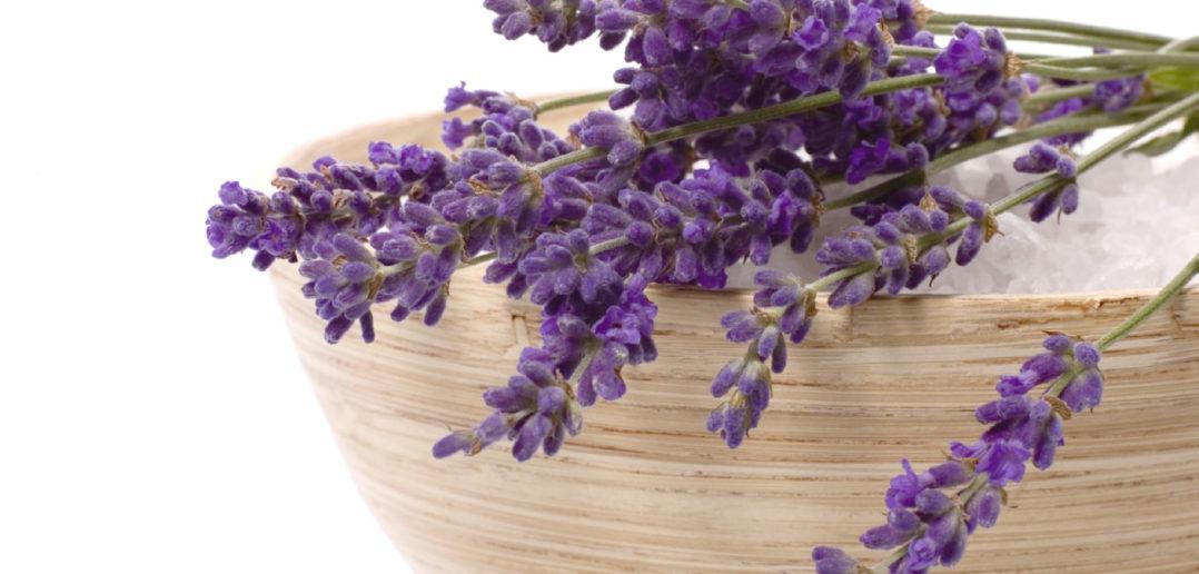 lavender-salt-bowl-702x3362x