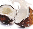 coconut fat phobia