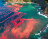 Mineral Magnificence For Your Health