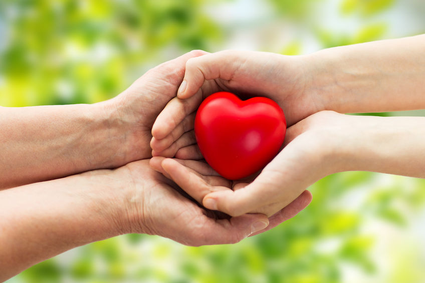 48221679 - people, age, family, love and health care concept - close up of senior woman and young woman hands holding red heart over green natural background