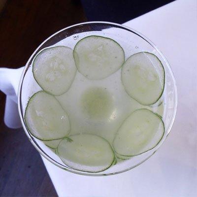 botanical-gin-martini-400_0
