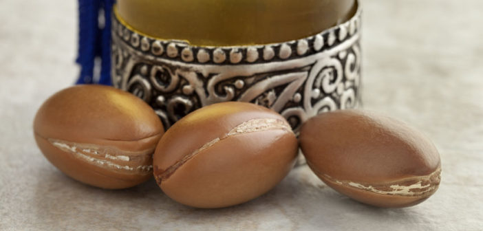 60410308 - bottle with moroccan argan oil and nuts close up
